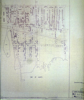 South City of Belleville Map with Property Boundaries in 1976