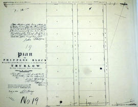 Plan of Phippen's Block in the Township of Thurlow