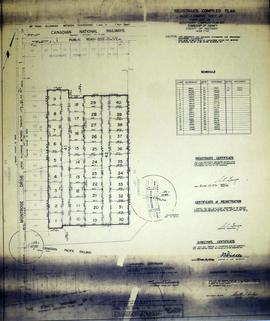 Registrar's Plan of Lot 29 in the Township of Sidney