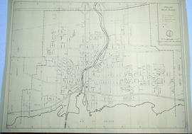 Street plan of the City of Belleville 1965