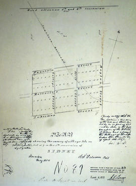 Plan of village lots on Lot 7 in the Township of Sidney