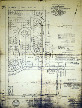 Subdivision of Lots 263-269 in the Township of Murray