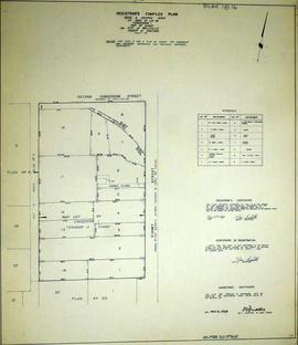 Graphic Index of Lot 28, Belleville