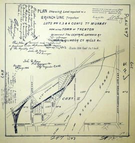 Plan showing Branch Line, Lots 2-4 in the Township of Murray