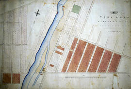 Plan of town lots at Canniff's Mills